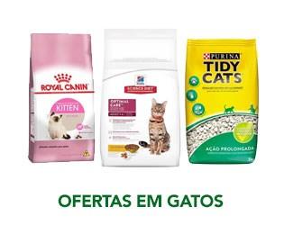 Ofertas em Gatos