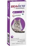 Antipulgas e Carrapatos Bravecto Transdermal Para Gatos De 6.25 a 12.5kg