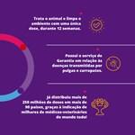 Antipulgas e Carrapatos MSD Bravecto para Cães de 4.5 a 10 Kg