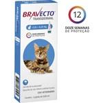 Antipulgas MSD Bravecto Transdermal para Gatos de 2.8 a 6.25 Kg