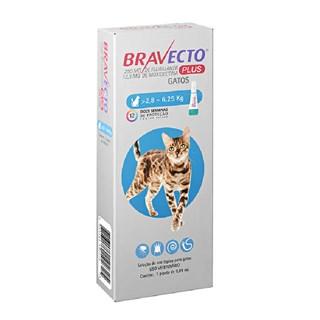 Antipulgas MSD Bravecto Transdermal Plus para Gatos de 2,8 a 6,25 Kg