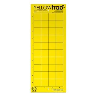 Armadilha Adesiva Amarela Colly Yellowtrap para Controle de Insetos Voadores