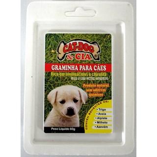 Catdog Graminha Para Cães