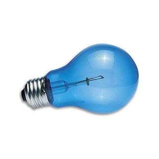 Lâmpada Azul Diúrna Zoomed Daylight Blue Reptile Bulb Para Repteis