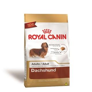 Ração Royal Canin Dachshund Para Cães Adultos