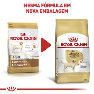 Ração Royal Canin para Cães Adultos da Raça Labrador Retriever - 12 Kg