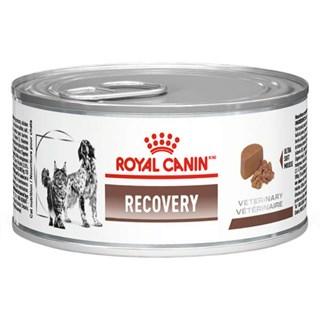 Ração Royal Canin Vet Diet Recovery Canine Para Cães