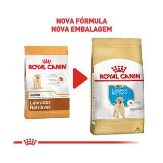 Ração Seca Royal Canin Puppy Labrador Retriever para Cães Filhotes