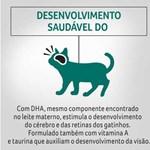 Ração Úmida Purina Pro Plan Kitten Sabor Frango Ao Molho Para Gatos Filhotes