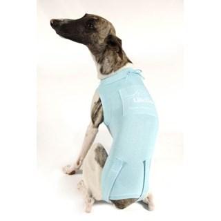Roupa Pós-Cirúrgica Lilicão Modelo Tradicional Para Cães Machos