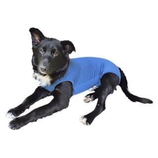 Roupa Pós Cirúrgica Pet Med Dry Azul Para Cães Machos