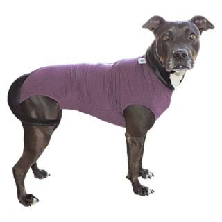 Roupa Pós Cirúrgica Pet Med Dry Regular Roxa Para Cães